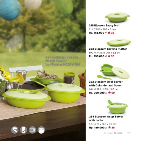 w Katalog Reguler Tupperware 2015 11 November 047