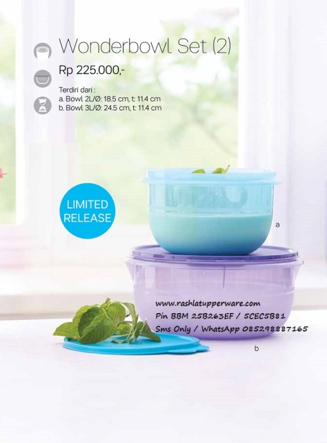 wBrosur 2016 04 April Katalog Promo Tupperware.page21