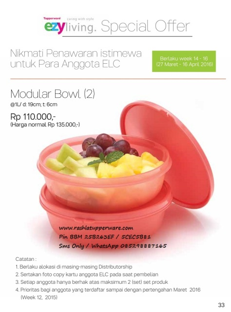 wBrosur 2016 04 April Katalog Promo Tupperware.page33