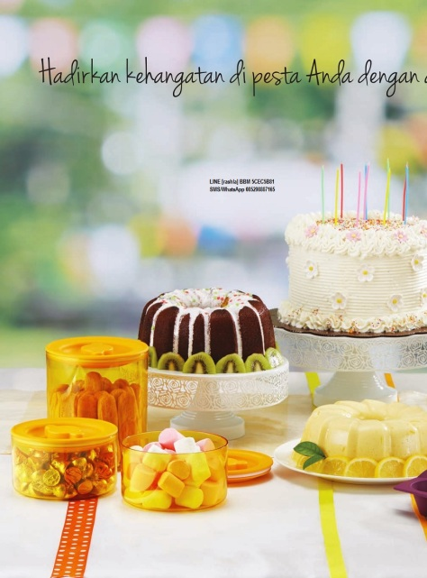 w201611-katalog-activity-tupperware-november-2016-page02