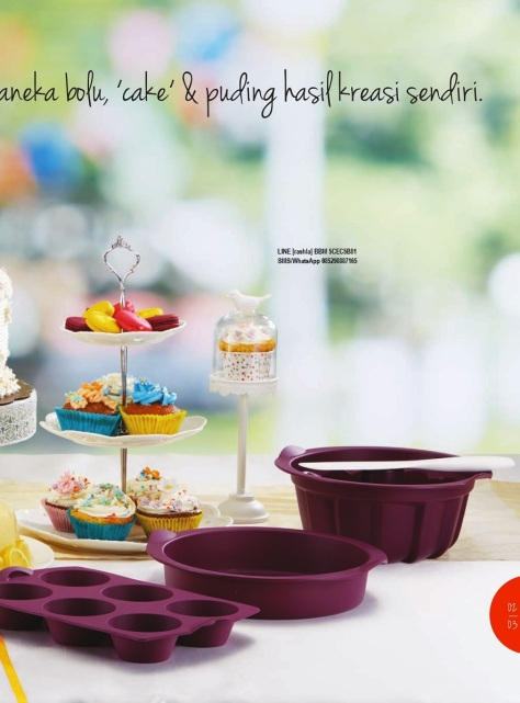 w201611-katalog-activity-tupperware-november-2016-page03