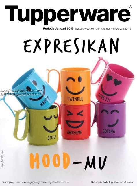 Katalog Activity Tupperware Januari 2017