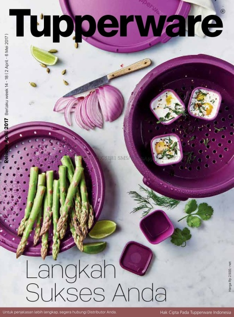 Katalog Activity Tupperware April 2017